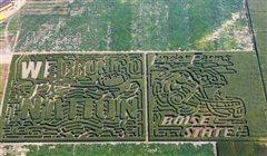 Corn maze coupons idaho